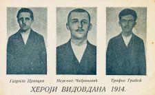 A szarajevói merénylők rövid utóélete