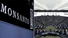 Monsanto lobbisták kitiltva az Európai Parlamentből