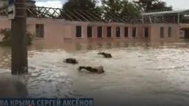 A kormányzó motorcsónakról tekintette meg a krími árvizet – emberei úszva követték