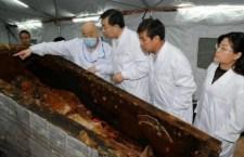 Dús fekete haja az ezerötszáz éves kínai asszonynak