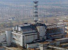 Egyes madarak alkalmazkodtak a sugárzáshoz Csernobil közelében