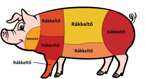 Mi van a WHO húsbotránya mögött?
