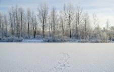 A jövő héten visszatér a tél, -16 fok is lehet