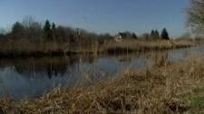 Egykor strand volt, most már az állatvilág is pusztul ezen a magyar folyószakaszon
