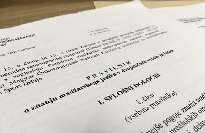 Magyar nyelvtudási szint a kétnyelvű oktatásban