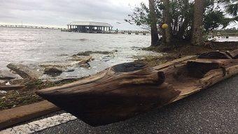 Ősi indián kenu maradványait hozta felszínre az Irma hurrikán