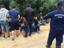 Százával fogják az illegális bevándorlókat Szeged határában