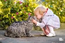A toxoplazmózis, a macska és az emberek
