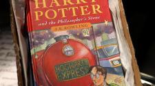 Harry Potter és Twilight könyveket égettek el katolikus lengyel papok