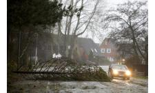 Csehországban viharok következtében több tízezer háztartás áram nélkül maradt