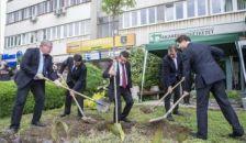 Hungarikum lett az akác – elfogadhatatlan, ha Brüsszel támadni meri