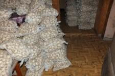 Márió és két társa megéhezett, ezért elloptak 300 zsák fokhagymát