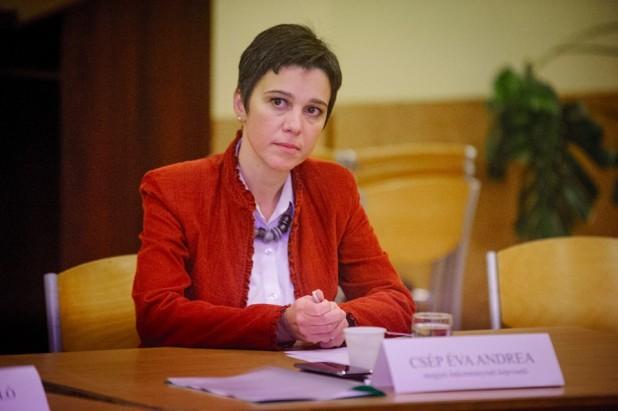 Csép Éva Andrea: növeljék meg a szociális szolgáltatásokra kiszabott állami támogatásokat