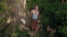40 éve ez a férfi naponta ültetett egy fát – az eredmény csodálatos