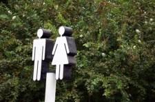 Mi legyen a genderszakokkal? Szempontok Kopp Mária nyomán