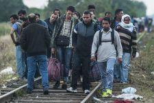 A fránya vonatok zavarták a síneken békésen bandukoló menekülteket, ezért megdobálták a szerelvényeket