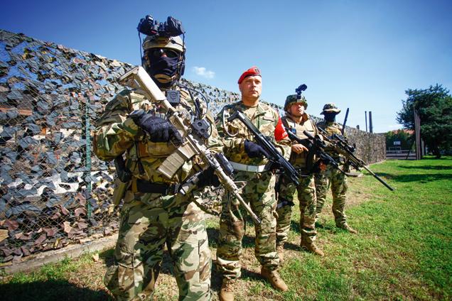 Magyar Honvédség: Haderőfejlesztés és fegyvergyártás
