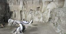 15 ezer éves mamutcsapdákat tártak fel