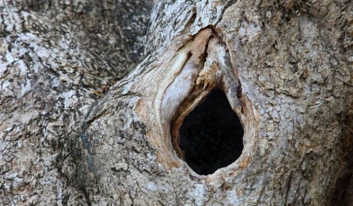 Nekünk hugyoztak – környezeti ösztrogéneket – és azt isszuk (Második rész)