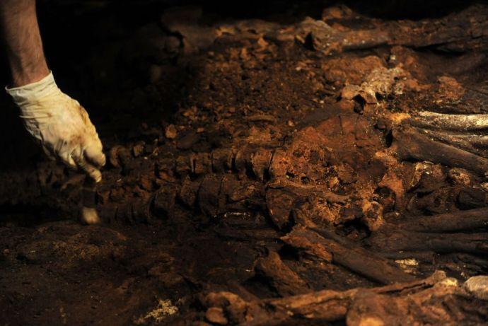 Több mint 3000 éves sírt tártak fel Münchenben