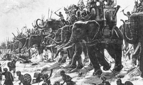 Kiderült a harci elefántokkal vívott csata rejtélye