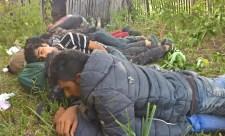 Nagy felzúdulás lett belőle: migránsokat fogtak az ásotthalmi mezőőrök