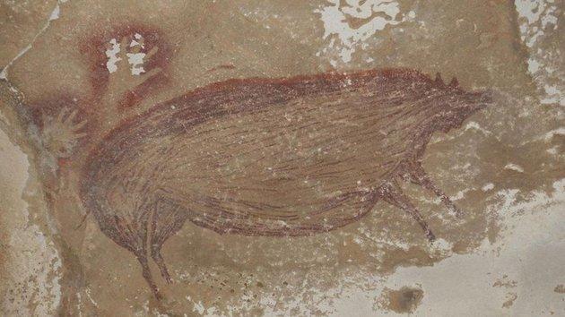 A világ legrégebbi állatábrázolására bukkantak Celebesz szigetén