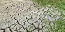 Vészhelyzet alakult ki a klímaváltozás miatt