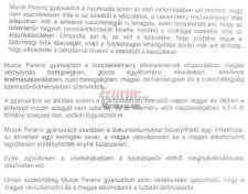 """Megtisztulás Fidesz módra: elítélt polgármesterjelölt, agyalágyult """"Tescós viccelődő"""" képviselőjelölt"""