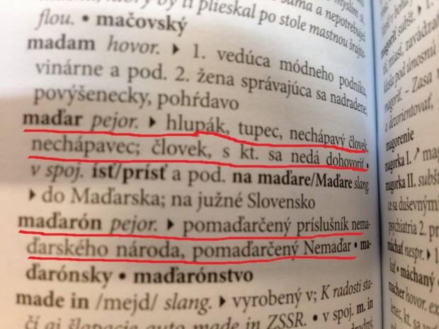 """A magyar immár """"hivatalosan"""" is butát, hülyét jelent a tótoknál"""