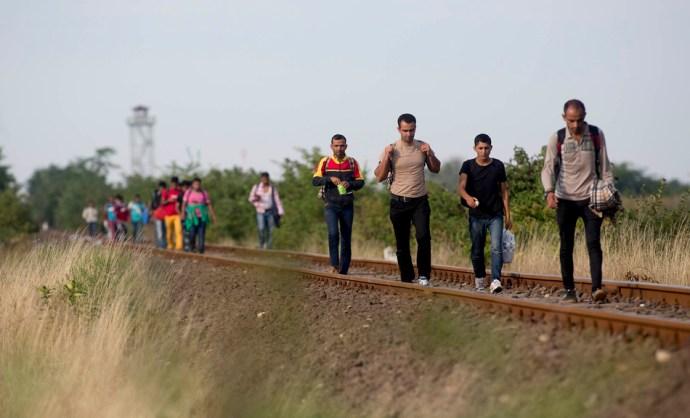 Elismerte a magyar államtitkár! 1300 bevándorlót fogadtunk be, de a kormány megpróbálta eltitkolni