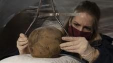 Archeogenetikus: a Mátyás-leszármazottak csontjainak megtalálásával felvázolhatóvá válhat a Hunyadiak genetikai családfája