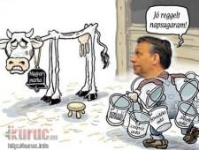 """Orbán: """"Kampány van, ki kell fogni a szelet a Jobbik vitorlájából"""" – uniós szinten tovatűnik a szabadságharcos retorika"""