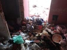 Így szarták tele a cigányok az önkényesen elfoglalt önkormányzati lakásokat Kalocsán, majd kilakoltatásuk után újat követeltek