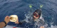 A Csendes-óceán közepén lévő szeméthalmon akart átúszni – visszafordult