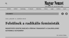 ifj. Lomnici Zoltán alkotmányjogász úgy írt kritikát az Isztambuli Egyezményről, mint egy férfijogi aktivista