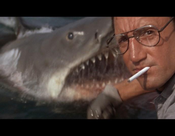 Elkezdtek gyülekezni a fehér cápák, senki sem érti az okát