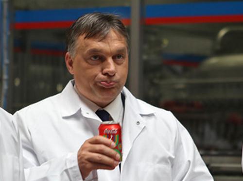 Fazekas: a boltokban 80-85 százalék a hazai aránya, sőt még a Coca-Cola is magyar termék