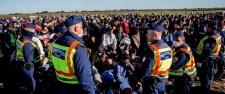 Román hivatalokban gyártották a migránsok hamis iratait