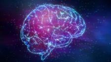 Meglepő dolog derült ki az idős emberek agyáról
