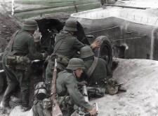 Német Pak 36 a Breszt-Litovszki csatában (1941)