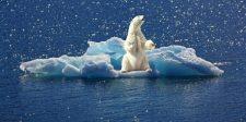 115 ezer éves melegrekord dőlt meg az Északi sarkvidéken