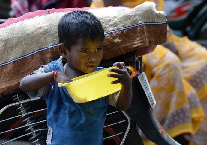 Nyolcmilliárd éhes ember követeli ki a zöld ellenforradalmat