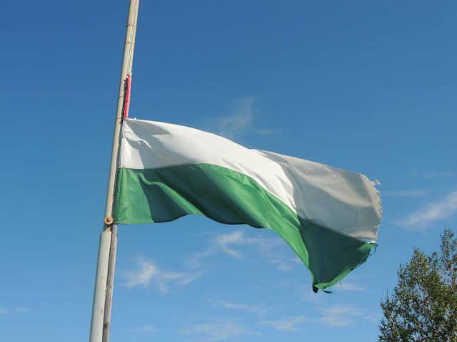 Meggyalázták a magyar zászlót Beregszászon