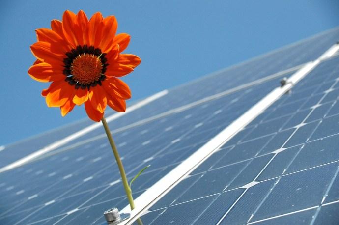 Miért a tavasz a napelemek kedvenc évszaka?