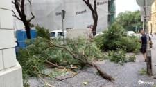 Súlyos sérültek a szegedi viharban – 112 kilométeres erejű széllökések
