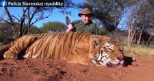 Tigrist lőtt Dél-Afrikában egy zsigárdi férfi, börtönbe mehet érte