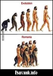 Evolúció vs. Románia: A szőröstalpúak lemaradtak…