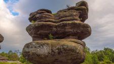 320 millió éves emlékművet tettek tönkre a vandálok
