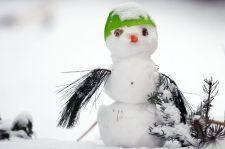 Egy órán keresztül szakadt a hó Győrben